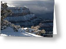 Grand Canyon Storm Greeting Card by Sandra Bronstein