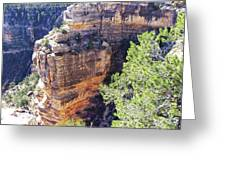 Grand Canyon19 Greeting Card