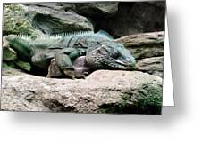 Grand Cayman Blue Iguana Greeting Card