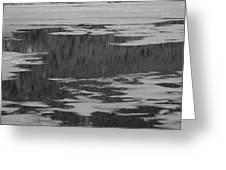 Grand Lake Evergreen Reflection On Ice I Greeting Card