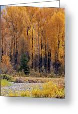 Grand Tetons Fall Greeting Card