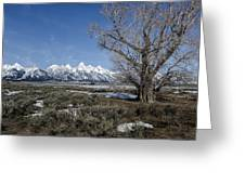 Grand Tetons From Gros Ventre Greeting Card