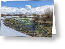 Grand Tetons From Willow Flats In Early April Greeting Card
