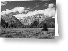 Grand Tetons In Black And White Greeting Card