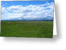 Grand Tetons Meadow Greeting Card