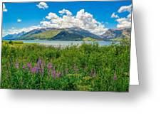 Grand Tetons Wildflowers Greeting Card