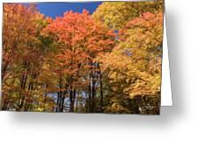 Grandma Red's Woods Greeting Card