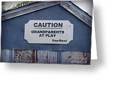 Grandparents At Play Greeting Card