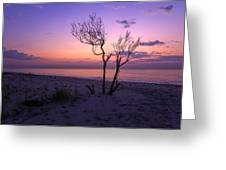 Grandview Beach Sunrise Greeting Card
