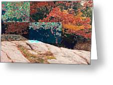 Granite Outcrop And Fall Leaves Aep2 Greeting Card