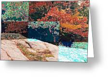 Granite Outcrop And Fall Leaves Aep3 Greeting Card