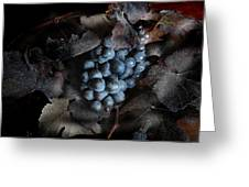 grape vine I Greeting Card