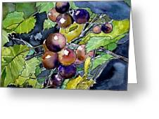 Grape Vine Still Life Greeting Card