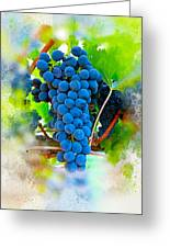 Grapes Of The Vine Greeting Card