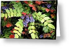 Grapes With Leaves - Too Greeting Card