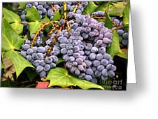 Grapes With Leaves Greeting Card