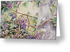 Grapevine Laurel Lakevineyard Greeting Card