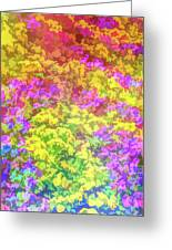 Graphic Rainbow Colorful Garden Greeting Card