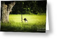 Grass Coverage Greeting Card