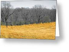 Grass Of Fire Greeting Card