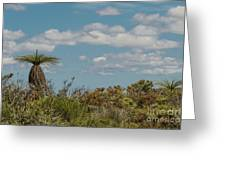 Grass Tree Landscape Greeting Card