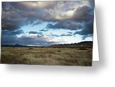Grasslands Near Portal Greeting Card
