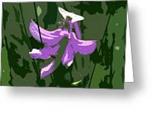 Grasspink Greeting Card