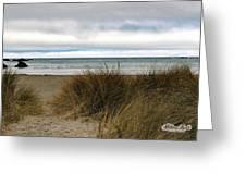 Grassy Beach Greeting Card by William Havle