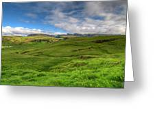 Grassy Meadow South Iceland Greeting Card