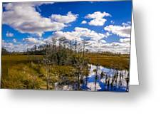 Grassy Waters 3 Greeting Card