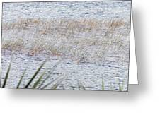 Grassy Waters Greeting Card