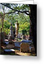 Graveyard In Charleston Greeting Card