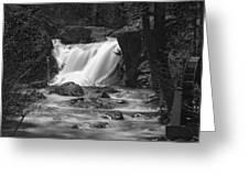 Gray Eagle Falls Greeting Card