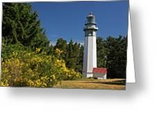 Grays Harbor Lighthouse H Greeting Card