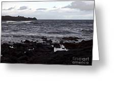 Grayscale Greeting Card
