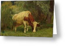 Grazing Cow Greeting Card