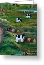 Grazing Cows. Greeting Card