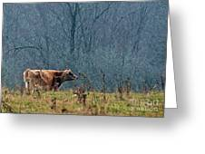 Grazing In Winter Greeting Card