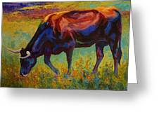 Grazing Texas Longhorn Greeting Card