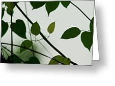 Green Leaves 2 Greeting Card