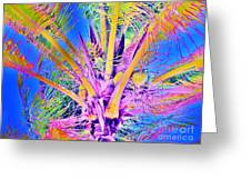 Great Abaco Palm Greeting Card