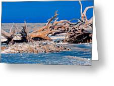 Great Blue Driftwood Greeting Card