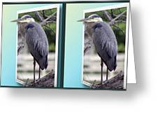 Great Blue Heron - Gently Cross Your Eyes And Focus On The Middle Image Greeting Card