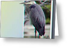 Great Blue Heron - Red-cyan 3d Glasses Required Greeting Card