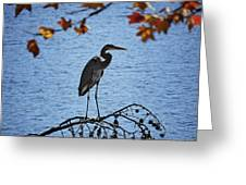 Great Blue Heron At Shores Of King's Mountain Point Greeting Card