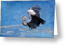 Great Blue Heron  Greeting Card by Betty LaRue
