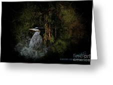 Great Blue Heron On The River Greeting Card