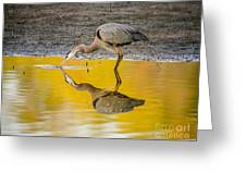 Great Blue Heron On Yellow Greeting Card