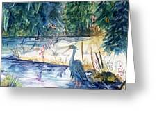 Great Blue Heron Square Cropped  Greeting Card