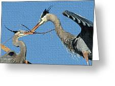 Great Blue Herons Build A Nest Greeting Card